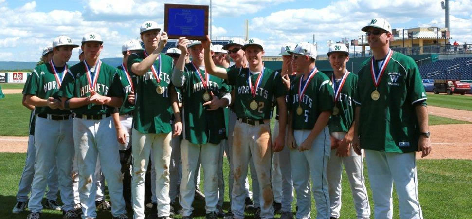 Wellsboro Baseball District/League Championships