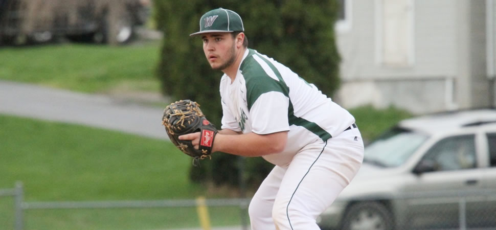 Wellsboro Baseball League Records